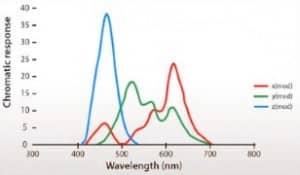 Bigatmo chromatic response of the eye