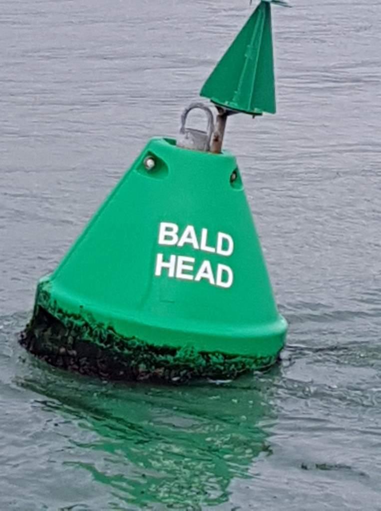 A green sea buoy reading 'bald Head'